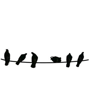 Covo Birds On Wire Attaccapanni Nero