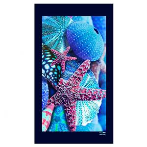 Spaziale Splendy Telo Mare Sea Star