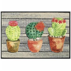 Wash & Dry Tappeto Jardin De Cactus