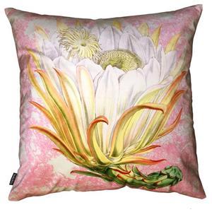 Vanilla Fly Cuscino Velluto Protea Rosa