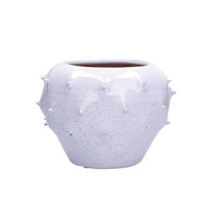 Rituali Domestici Vaso Decorativo Basso Opuntia